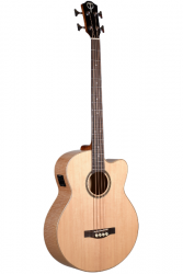 Teton Acoustic/Electric Concert Bass- Black Friday 20% Off!